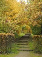 nature stairs autmun path by Nexu4