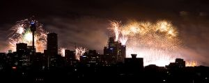 Midnight Fireworks - IMG_3710 by leafinsectman