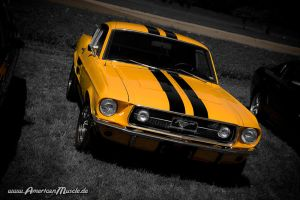 orange pony car by AmericanMuscle