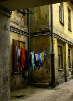 colors of live by Wilithin