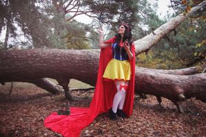 Snow White singing with birds. by TheHoshi