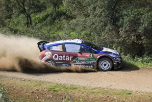 2013, Mads Ostberg, Ford, Ourique, Rally Portugal by F1PAM