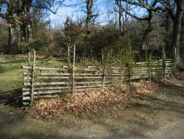 Fence by CAStock