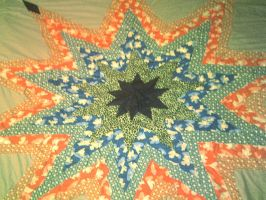 Mom's Frog Star Quilt by razzigyrl