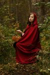 LittleRedRidingHood by lynx48