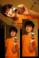 Percy Jackson- Test by twinfools