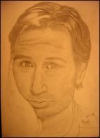 David Duchovny by muup