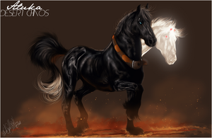 .:DesertChaos:. by WhiteSpiritWolf