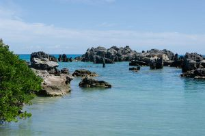 Bermuda 037 by FairieGoodMother