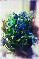 Forget-me-not by Le-Petit-Fritz
