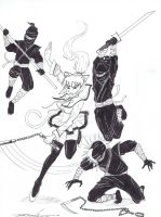 Fight Cat Girl Fight by Zepeda