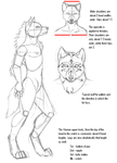 Anthro Werewolf Tutorial by KMoongangSR