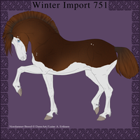 Nordanner Winter Import 751 by DemiWolfe