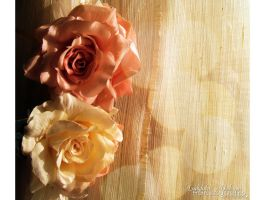 Soft roses I by FrancescaDelfino