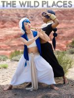 The Wild Places: Judal and Aladdin by JouninK