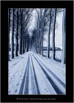 Tracks in the Snow by sandervandenberg