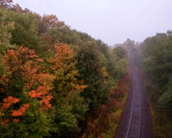Autumn Traintracks by Bdoing