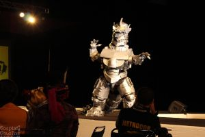 Metrocon 2015 (101) by CosplayCousins