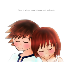 There is always sleep between part and meet by HeartlessKairi