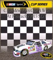 Catrine DeMew wins the Quaker State 400 by Dorothy64116