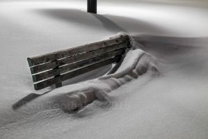 The Bench DT11223-1 by detphoto