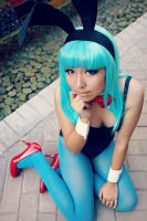 Bunny Bulma Briefs Cosplay by Oniakako