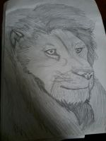 Realistic lion by wolfyykid