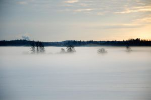 A fog 2 by isabelle-19