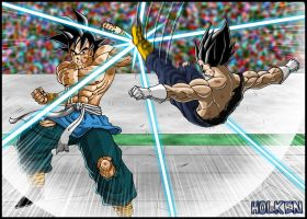 Son Goku VS Vegeta by DBZwarrior