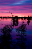 Mystical Menindee by cazzaritch