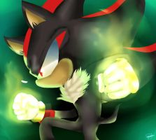 Shadow The Hedgehog: Chaos Rage by shallowdeepcreation