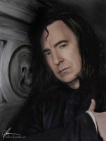 A Tribute to Severus by Halessa