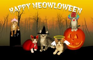 Happy Meowloween by dimensioncr8r