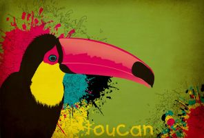 Toucan by kennyisdeadiamtavi