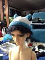 Liliy hat for Chase first attempt by ShelandryStudio