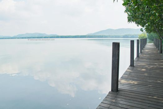Mangrove Forest by tawunap159