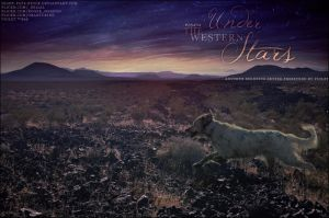 under the western stars by renderedsublime