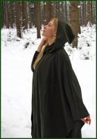 Green Cape 8 by Kuoma-stock