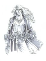 Grey Pirate by Hbruton