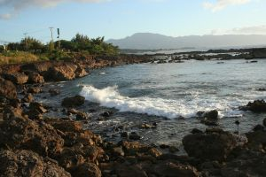 Shark's Cove Hawaii by Witch-Hunter-87