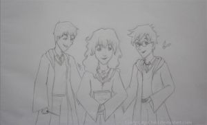 The Golden Trio by Crazy-City-Child
