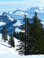 Switzerland in winter by Cadaska
