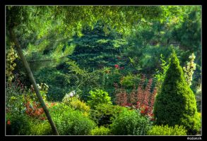 HDR - My Magic Garden IV by adamsik