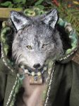 Wolf Shaman face 3 by badgersoph