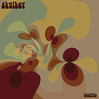 sndtrks cover by skulkey
