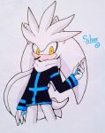 Winter Silver by cassidythehedgehog1