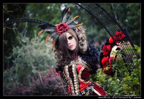 Versailles 03 by red-d-evil