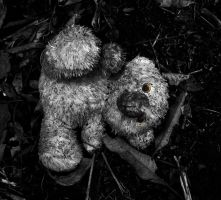 lost teddy by dukeofspade