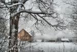 Gray winter day by xrust