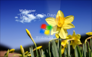 Wallpaper Daffodil Sev7n Days by CaHilART